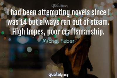 Photo Quote of I had been attempting novels since I was 14 but always ran out of steam. High hopes, poor craftsmanship.