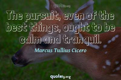 Photo Quote of The pursuit, even of the best things, ought to be calm and tranquil.