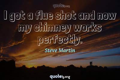 Photo Quote of I got a flue shot and now my chimney works perfectly.