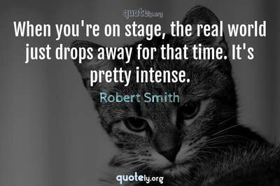 Photo Quote of When you're on stage, the real world just drops away for that time. It's pretty intense.