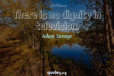 Photo Quote of There is no dignity in television.