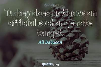 Photo Quote of Turkey does not have an official exchange rate target.