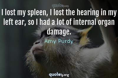 Photo Quote of I lost my spleen, I lost the hearing in my left ear, so I had a lot of internal organ damage.