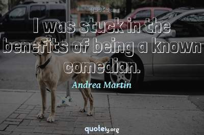Photo Quote of I was stuck in the benefits of being a known comedian.