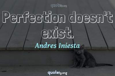 Photo Quote of Perfection doesn't exist.