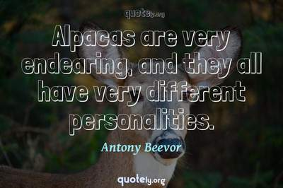 Photo Quote of Alpacas are very endearing, and they all have very different personalities.