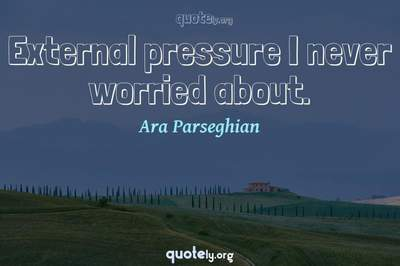 Photo Quote of External pressure I never worried about.