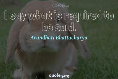 Photo Quote of I say what is required to be said.