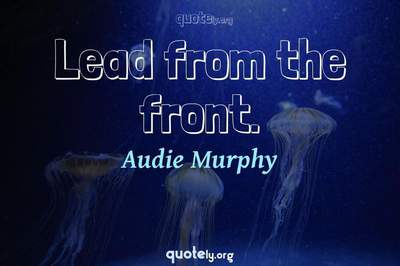 Photo Quote of Lead from the front.