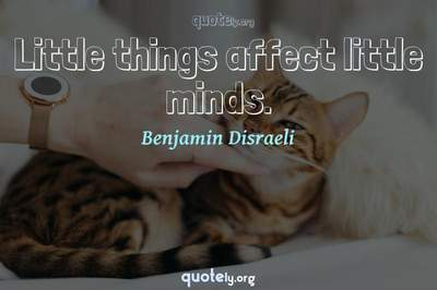 Photo Quote of Little things affect little minds.