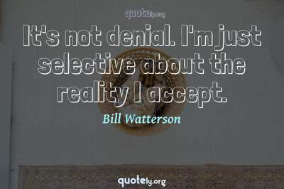 Photo Quote of It's not denial. I'm just selective about the reality I accept.