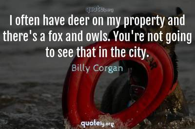 Photo Quote of I often have deer on my property and there's a fox and owls. You're not going to see that in the city.