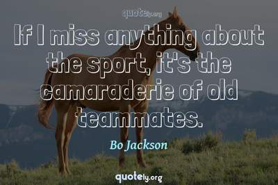 Photo Quote of If I miss anything about the sport, it's the camaraderie of old teammates.