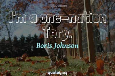 Photo Quote of I'm a one-nation Tory.