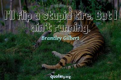Photo Quote of I'll flip a stupid tire. But I ain't running.