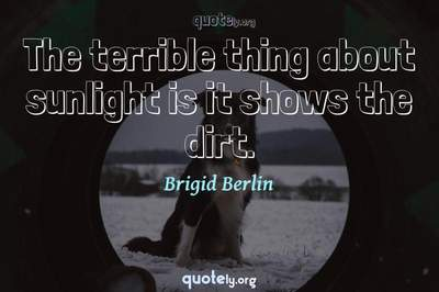 Photo Quote of The terrible thing about sunlight is it shows the dirt.