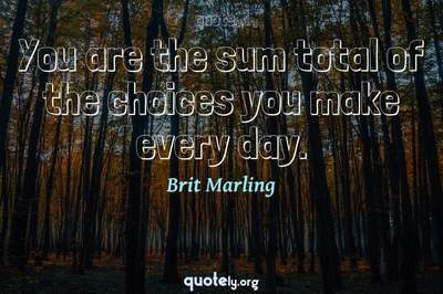 Photo Quote of You are the sum total of the choices you make every day.