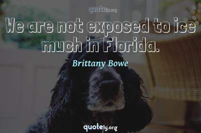 Photo Quote of We are not exposed to ice much in Florida.