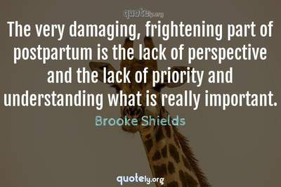 Photo Quote of The very damaging, frightening part of postpartum is the lack of perspective and the lack of priority and understanding what is really important.
