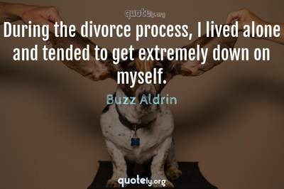 Photo Quote of During the divorce process, I lived alone and tended to get extremely down on myself.