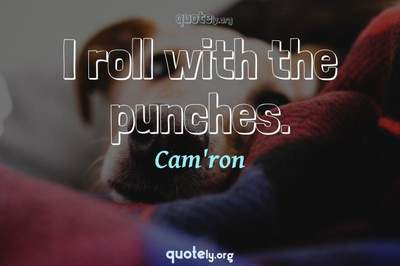 Photo Quote of I roll with the punches.