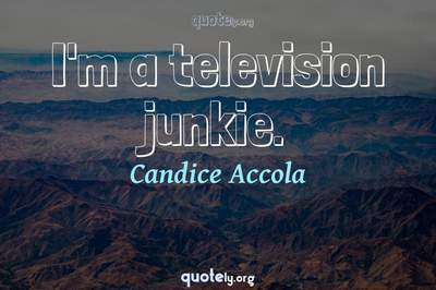 Photo Quote of I'm a television junkie.