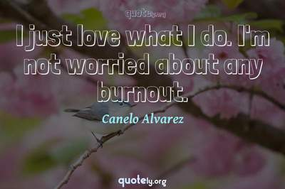 Photo Quote of I just love what I do. I'm not worried about any burnout.