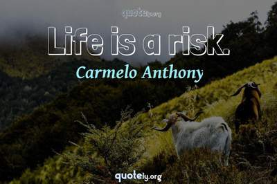 Photo Quote of Life is a risk.