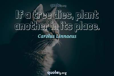 Photo Quote of If a tree dies, plant another in its place.