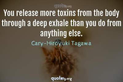 Photo Quote of You release more toxins from the body through a deep exhale than you do from anything else.