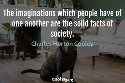 Photo Quote of The imaginations which people have of one another are the solid facts of society.