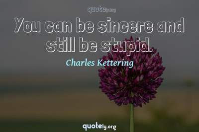 Photo Quote of You can be sincere and still be stupid.