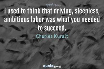 Photo Quote of I used to think that driving, sleepless, ambitious labor was what you needed to succeed.