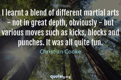 Photo Quote of I learnt a blend of different martial arts - not in great depth, obviously - but various moves such as kicks, blocks and punches. It was all quite fun.
