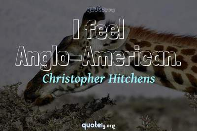 Photo Quote of I feel Anglo-American.