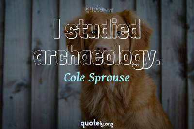Photo Quote of I studied archaeology.