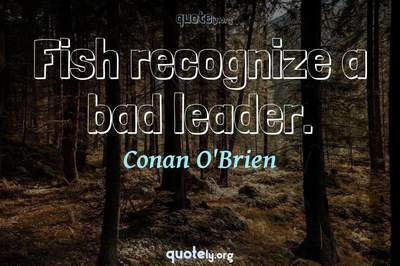 Photo Quote of Fish recognize a bad leader.