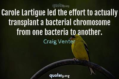 Photo Quote of Carole Lartigue led the effort to actually transplant a bacterial chromosome from one bacteria to another.