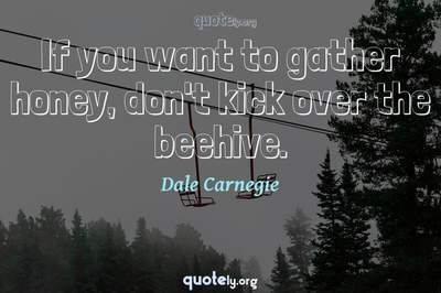 Photo Quote of If you want to gather honey, don't kick over the beehive.