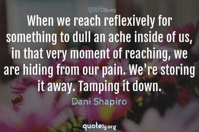 Photo Quote of When we reach reflexively for something to dull an ache inside of us, in that very moment of reaching, we are hiding from our pain. We're storing it away. Tamping it down.
