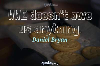Photo Quote of WWE doesn't owe us anything.