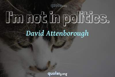 Photo Quote of I'm not in politics.