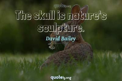 Photo Quote of The skull is nature's sculpture.