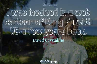 Photo Quote of I was involved in a web cartoon of Kung Fu with WB a few years back.