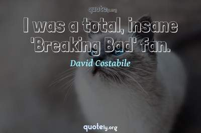 Photo Quote of I was a total, insane 'Breaking Bad' fan.