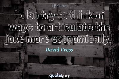 Photo Quote of I also try to think of ways to articulate the joke more economically.