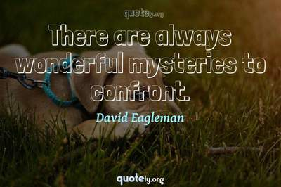 Photo Quote of There are always wonderful mysteries to confront.