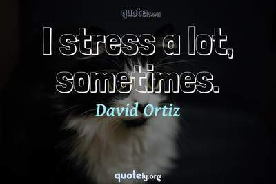 Photo Quote of I stress a lot, sometimes.