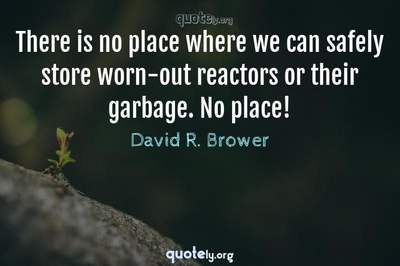 Photo Quote of There is no place where we can safely store worn-out reactors or their garbage. No place!