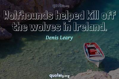 Photo Quote of Wolfhounds helped kill off the wolves in Ireland.